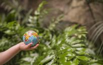 A BACHL Kft. Környezetvédelmi vállalásai az EMAS által tanúsítva